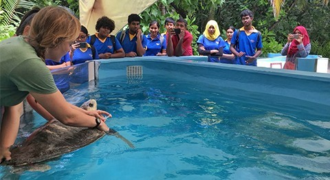 Billabong High International School Visits the Marine Turtle Rescue Center