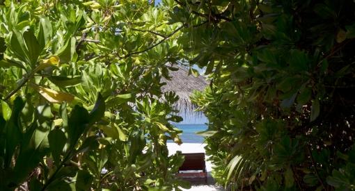 Coco palm sunset beach villa2589