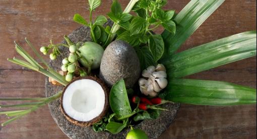 Coco palm dhuni kolhu cornus7267